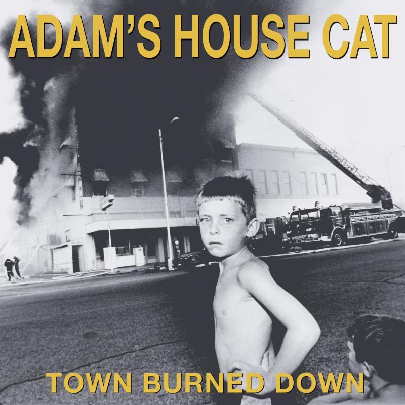 Adam's House Cat